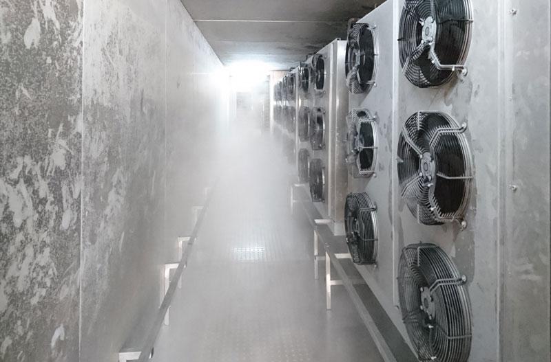 tunnel di surgelazione in funzione